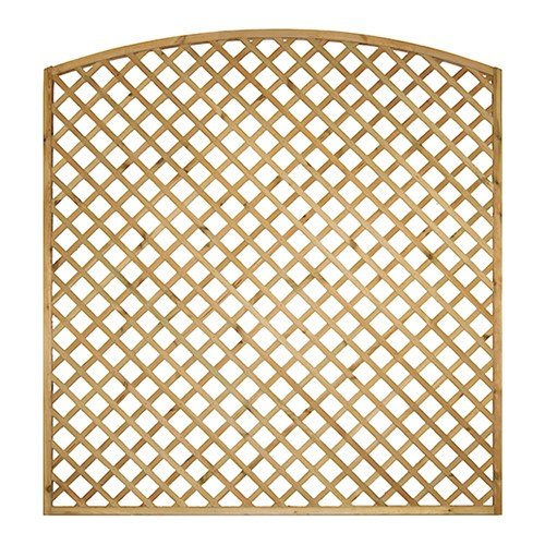 Lattice Trellis Convex Top